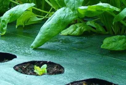 农用竞技宝官网在农业生产领域的应用